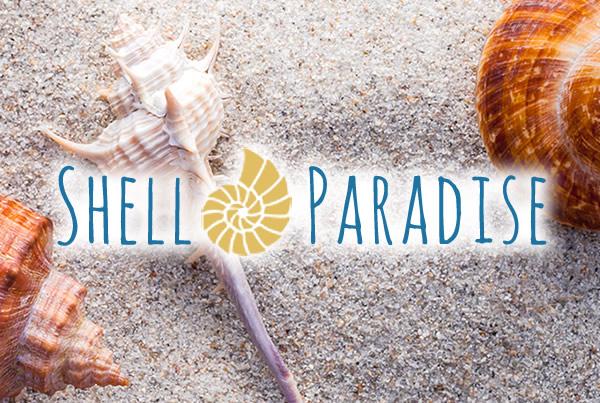 Shell Paradise
